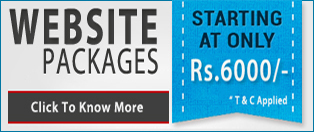 Panacia Softwares : Website Packages Pricing.